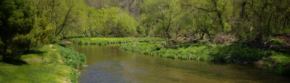 St. Croix Valley Fishing Report May 2011