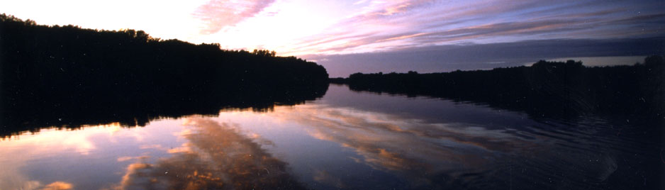 Guided Fly Fishing Trips on the Scenic St. Croix River