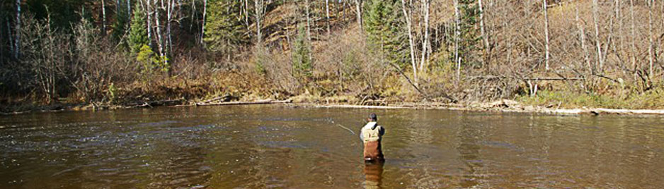 October 2011 st croix river fishing report minnesota for Brule river fishing report